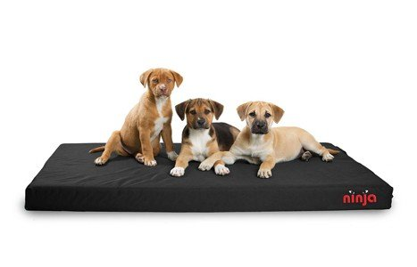 Dog Gone Smart Pet Products Repelz It Ninja Bed