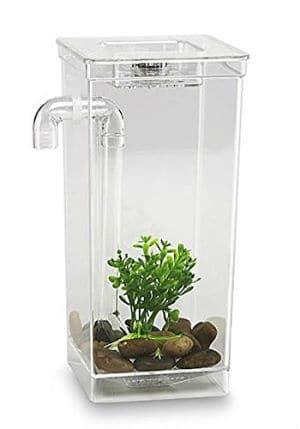 My-Fun-Fish-Tank
