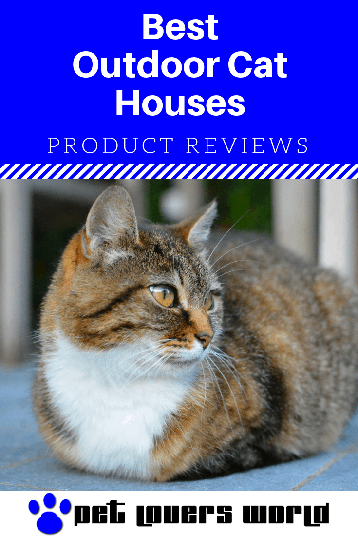 Best Insulated Cat House Reviews Pinterest Image
